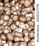 champignon royal mushrooms.... | Shutterstock . vector #1036127743