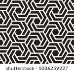 vector seamless pattern. modern ... | Shutterstock .eps vector #1036259227