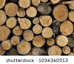 chopped firewood. background ... | Shutterstock . vector #1036360513