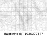 topographic map background....   Shutterstock .eps vector #1036377547