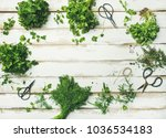 flat lay of bunches of various... | Shutterstock . vector #1036534183