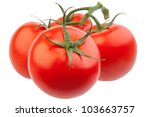 closeup of tomatoes on the vine ... | Shutterstock . vector #103663757