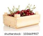 ripe cherry berries in crate... | Shutterstock . vector #103669907