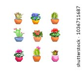 a set of houseplants in flower... | Shutterstock .eps vector #1036711687