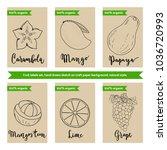 tropical fruit packaging design ... | Shutterstock .eps vector #1036720993