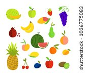 vector illustration of fruits... | Shutterstock .eps vector #1036775083