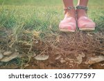 detail of a young woman's shoes ... | Shutterstock . vector #1036777597