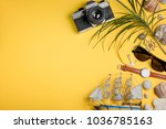 boat  camera and palm tree on... | Shutterstock . vector #1036785163