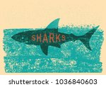 shark swimming in sea on old... | Shutterstock .eps vector #1036840603