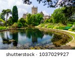 wells cathedral and bishop's... | Shutterstock . vector #1037029927