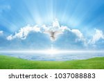 holy spirit bird flies in skies ... | Shutterstock . vector #1037088883