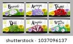 set colorful food labels ... | Shutterstock .eps vector #1037096137