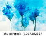 white poses inside in water on... | Shutterstock . vector #1037202817