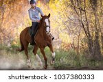 Stock photo young pretty girl riding a horse with backlit leaves behind 1037380333