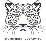 Creative Leopard Illustration - stock vector