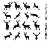 deer silhouette vector set | Shutterstock .eps vector #1037534077