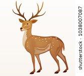 deer vector illustration. | Shutterstock .eps vector #1038007087
