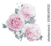 watercolor pink roses... | Shutterstock . vector #1038145933