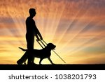 silhouette of a blind man... | Shutterstock . vector #1038201793