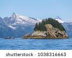 kenai fjords national park ... | Shutterstock . vector #1038316663