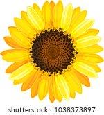 yellow flower of sunflower on... | Shutterstock .eps vector #1038373897