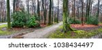 natural landscape   park with... | Shutterstock . vector #1038434497