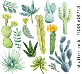 watercolor collection with... | Shutterstock . vector #1038508213