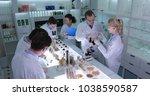 team of food researchers... | Shutterstock . vector #1038590587