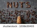 inscription nuts  from...   Shutterstock . vector #1038630403