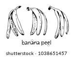 banana peels  vector hand drawn ... | Shutterstock .eps vector #1038651457