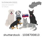 dogs by country of origin.... | Shutterstock .eps vector #1038700813
