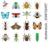 set of different insects color... | Shutterstock .eps vector #1038710497