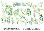 vector cartoon abstract green...