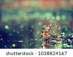 summer background flowers...   Shutterstock . vector #1038824167