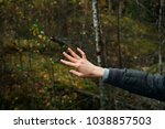woman hand in forest | Shutterstock . vector #1038857503