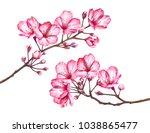 cherry blossom branches... | Shutterstock . vector #1038865477