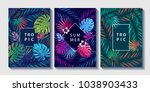 tropical and jungle leaves and... | Shutterstock . vector #1038903433