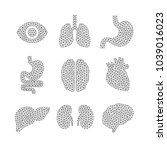 set of vector illustrations of... | Shutterstock .eps vector #1039016023