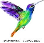 hummingbird bird art | Shutterstock . vector #1039221037