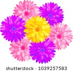 bouquet of different color... | Shutterstock .eps vector #1039257583