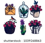 crocus  tulips  hyacinth  lily... | Shutterstock .eps vector #1039268863