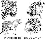 vector drawings sketches... | Shutterstock .eps vector #1039367497