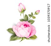 the blooming rose with couple... | Shutterstock .eps vector #1039370917
