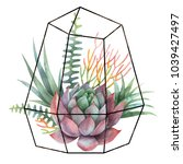 watercolor composition of cacti ... | Shutterstock . vector #1039427497