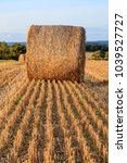 Small photo of A haybale in a plowed field in Sussex