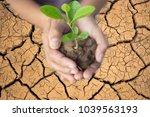 hands of farmer growing and... | Shutterstock . vector #1039563193