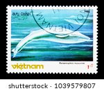 Small photo of MOSCOW, RUSSIA - NOVEMBER 26, 2017: A stamp printed in Vietnam shows Blue Whale (Balaenoptera musculus), serie, circa 1985