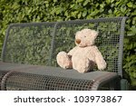 Lost Teddy Bear Seated On A...