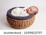 baby  newborn  fur  skin care... | Shutterstock . vector #1039823707