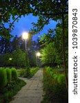 evening garden  alley in the... | Shutterstock . vector #1039870843